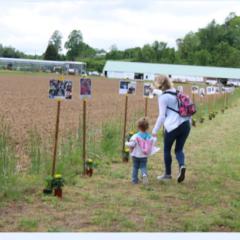 2019 Tri- County Memory Walk